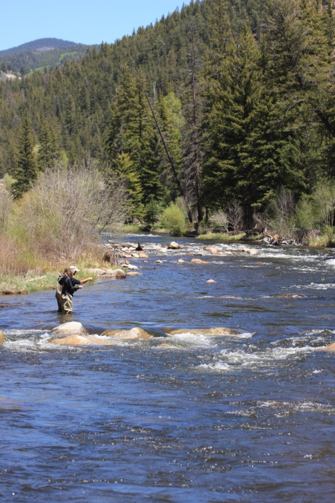 Sold wilder on the taylor riverfront homesite 6 for Crested butte fishing