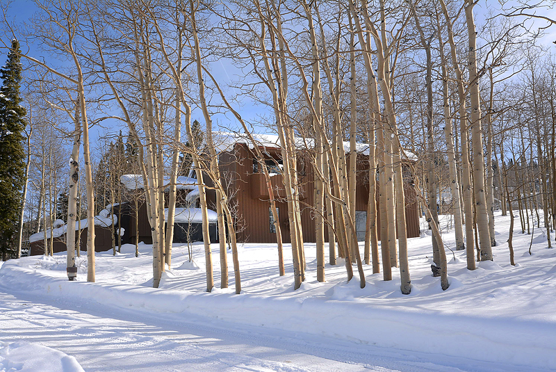 New Listing Ski Home 16 Red Lady Way Mt. Crested Butte